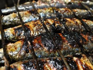 sardine bbq